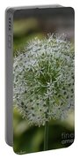 Onion Seeds Portable Battery Charger