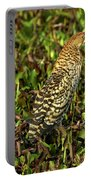 Onore Fascie Tigrisoma Fasciatum Portable Battery Charger