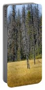 Open Meadow Glacier National Park Portable Battery Charger