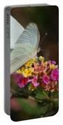 Open Wings Portable Battery Charger