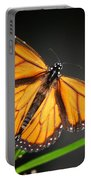 Open Wings Monarch Butterfly Portable Battery Charger