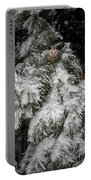 Opossum In The Pines Portable Battery Charger