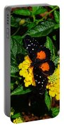 Orange And Black Butterfly Portable Battery Charger