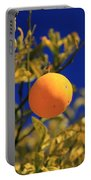 Orange And Blue Sky Portable Battery Charger