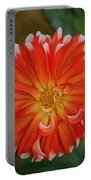 Orange And White Portable Battery Charger