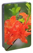 Orange Azalea At Moore State Park Portable Battery Charger