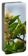 Orange Blossom Special Portable Battery Charger