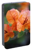Orange Bougainvillea Portable Battery Charger