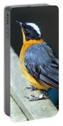 Orange Breasted Bird Portrait Portable Battery Charger