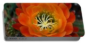 Orange Cactus Flower Portable Battery Charger