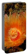 Orange Cactus Portable Battery Charger