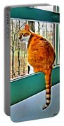 Orange Cat In Window Portable Battery Charger