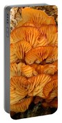 Orange Cluster Fungi Portable Battery Charger