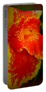 Orange Delight Portable Battery Charger by Debra Forand