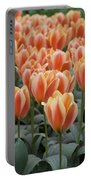 Orange Dutch Tulips Portable Battery Charger