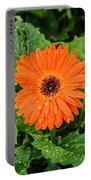 Orange Gerber Daisy 2 Portable Battery Charger