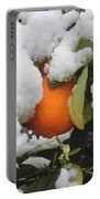 Orange In Snow Portable Battery Charger