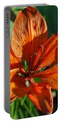 Orange Lilly Portable Battery Charger