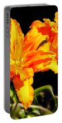 Orange Lily Twins Portable Battery Charger