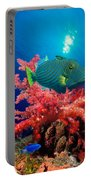 Orange-lined Triggerfish Balistapus Portable Battery Charger