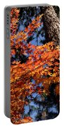 Orange Maple Portable Battery Charger