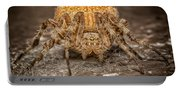 Orange Marbled Orb Weaver Portable Battery Charger