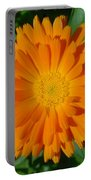 Orange Marigold Close Up With Garden Background Portable Battery Charger