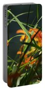 Orange Natural Beauty...   # Portable Battery Charger