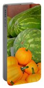 Orange On Green Portable Battery Charger
