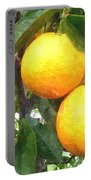 Orange On Tree Portable Battery Charger