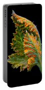 Orange Rust Portable Battery Charger