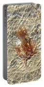Orange Seaweed Portable Battery Charger