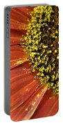 Orange Sunflower Close Up Portable Battery Charger