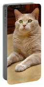 Orange Tabby Cat Portable Battery Charger