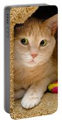 Orange Tabby Cat In Cat Condo Portable Battery Charger