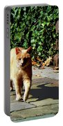 Orange Tabby Taking A Walk Portable Battery Charger