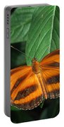 Orange Tiger Butterfly Or Banded Orange Portable Battery Charger