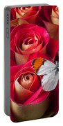 Orange Tip Butterfly Portable Battery Charger