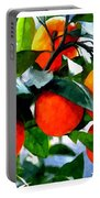Orange Tree In Springtime  Portable Battery Charger