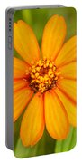 Orange Zenia Portable Battery Charger