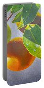 Oranges Portable Battery Charger by Carey Chen