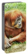 Orangutan By Half Portable Battery Charger