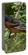 Orchard Oriole Male Portable Battery Charger