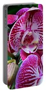 Radiant Orchid  Portable Battery Charger