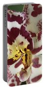 Orchid 32 Portable Battery Charger