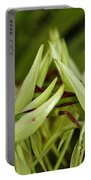 Orchid Arms Portable Battery Charger