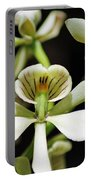 Orchid Encyclia Fragrans Portable Battery Charger