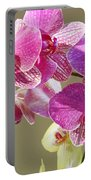 Orchid Flowers Art Prints Pink Orchids Portable Battery Charger