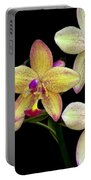 Orchid In Blossom Portable Battery Charger