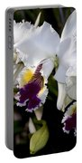 Orchid Laeliocattleya Lucie Hausermann With Buds 4074 Portable Battery Charger